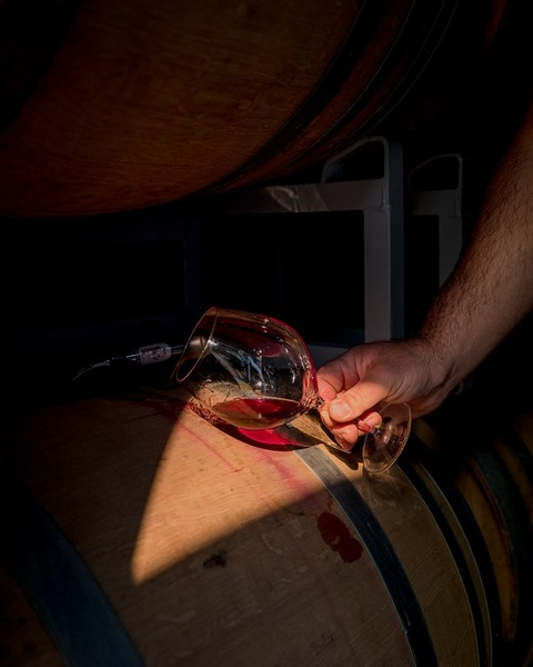 One Barrel of Pinot Noir